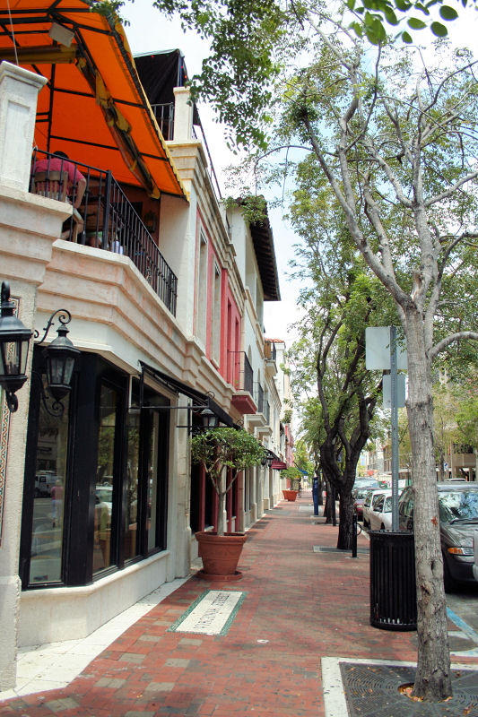 Shop the lushly landscaped tree-lined streets in Coconut Grove. The pedestrian-friendly village center in Coconut Grove is lined with a selection of unique local galleries and boutiques. You'll find a combination of throwback hippie shops, chic boutiques and traditional brand names.